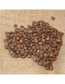 Rwanda Nyakizu Bourbon Rojo